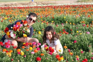israel-prachim