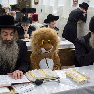 Purim_lion_in_Syna_3221317k-330x330