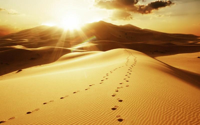 deser-morocco-sand