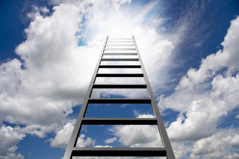 ladder-800x533
