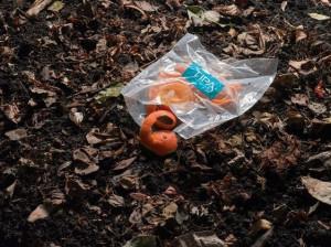 TIPA-biodegradable-plastic-packaging-decomposes-like-orange-peel_wrbm_large